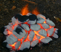 Click on the COALS to go to our PINTEREST page!
